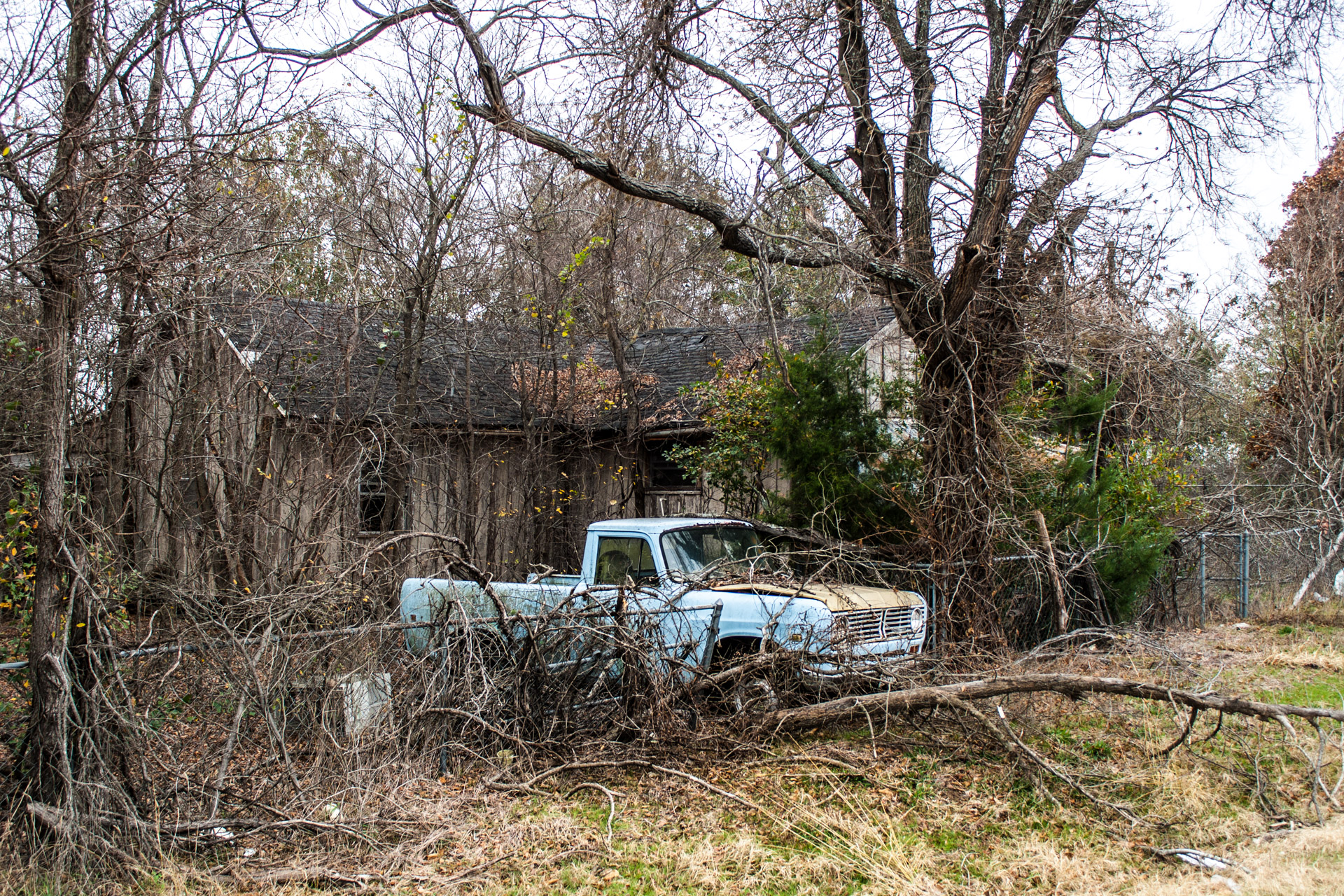 Reagan, Texas - A Branchy House and Truck (side far)