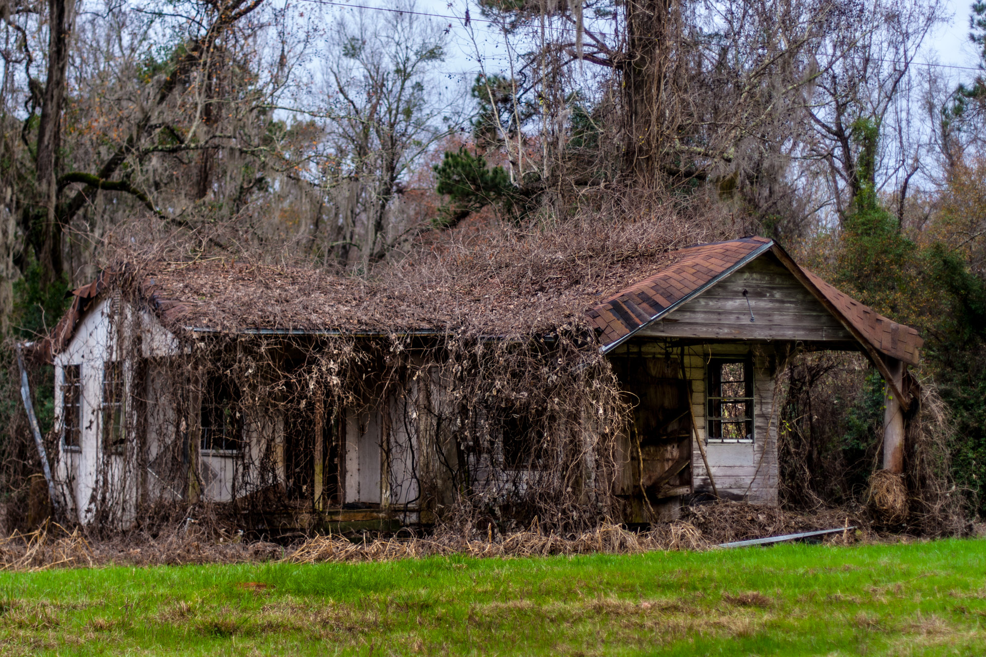 Tallahassee, Florida - A Covered Roof House (left close)