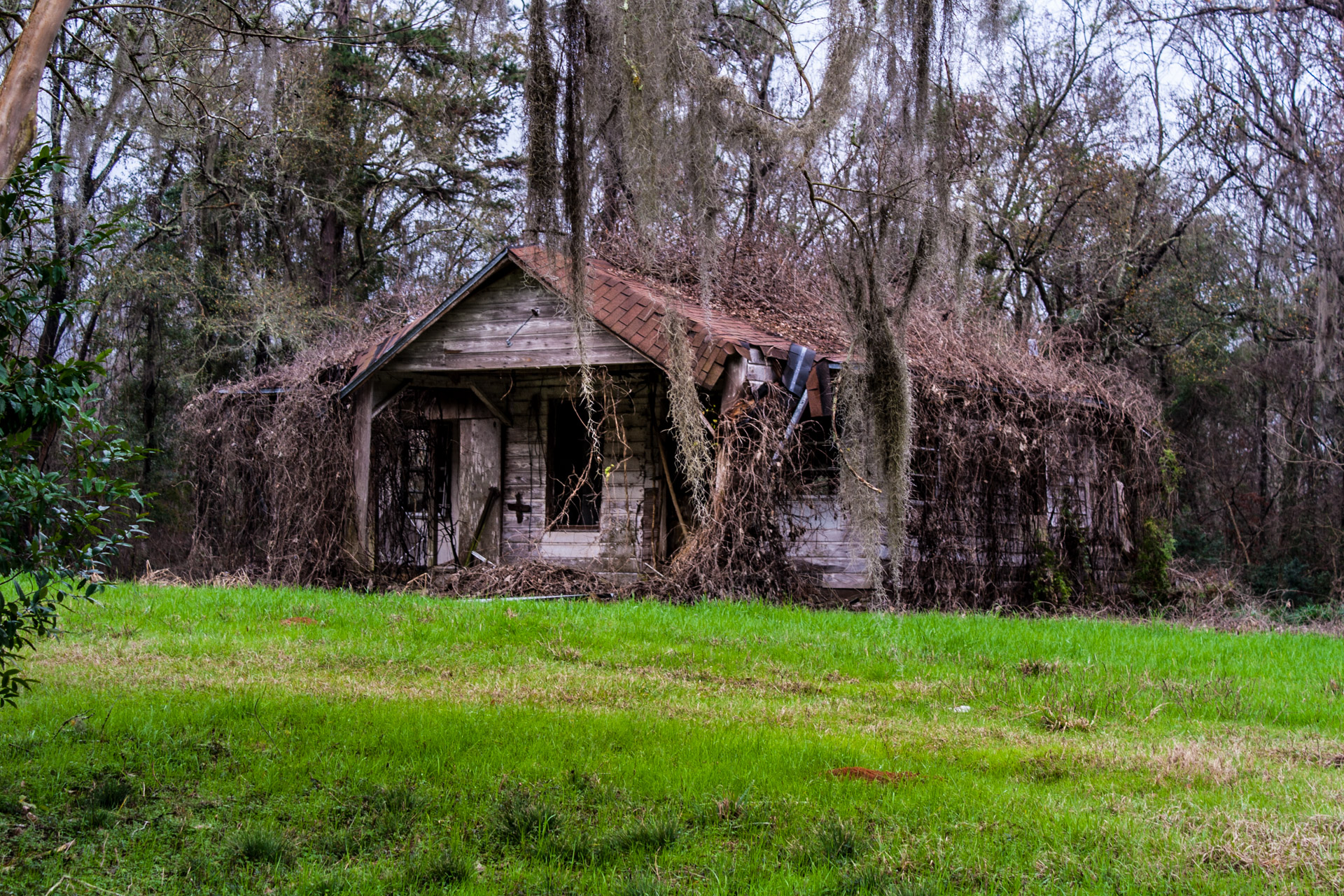 Tallahassee, Florida - A Covered Roof House (right close)
