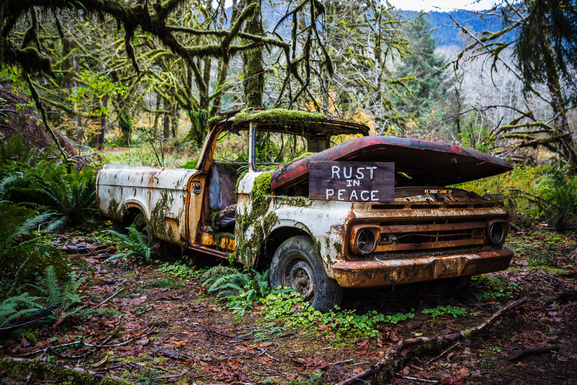 Rusty Forest Truck (close angle 1)