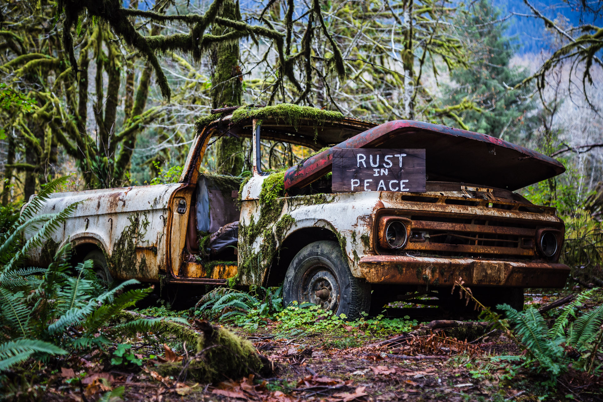Rusty Forest Truck (close side)