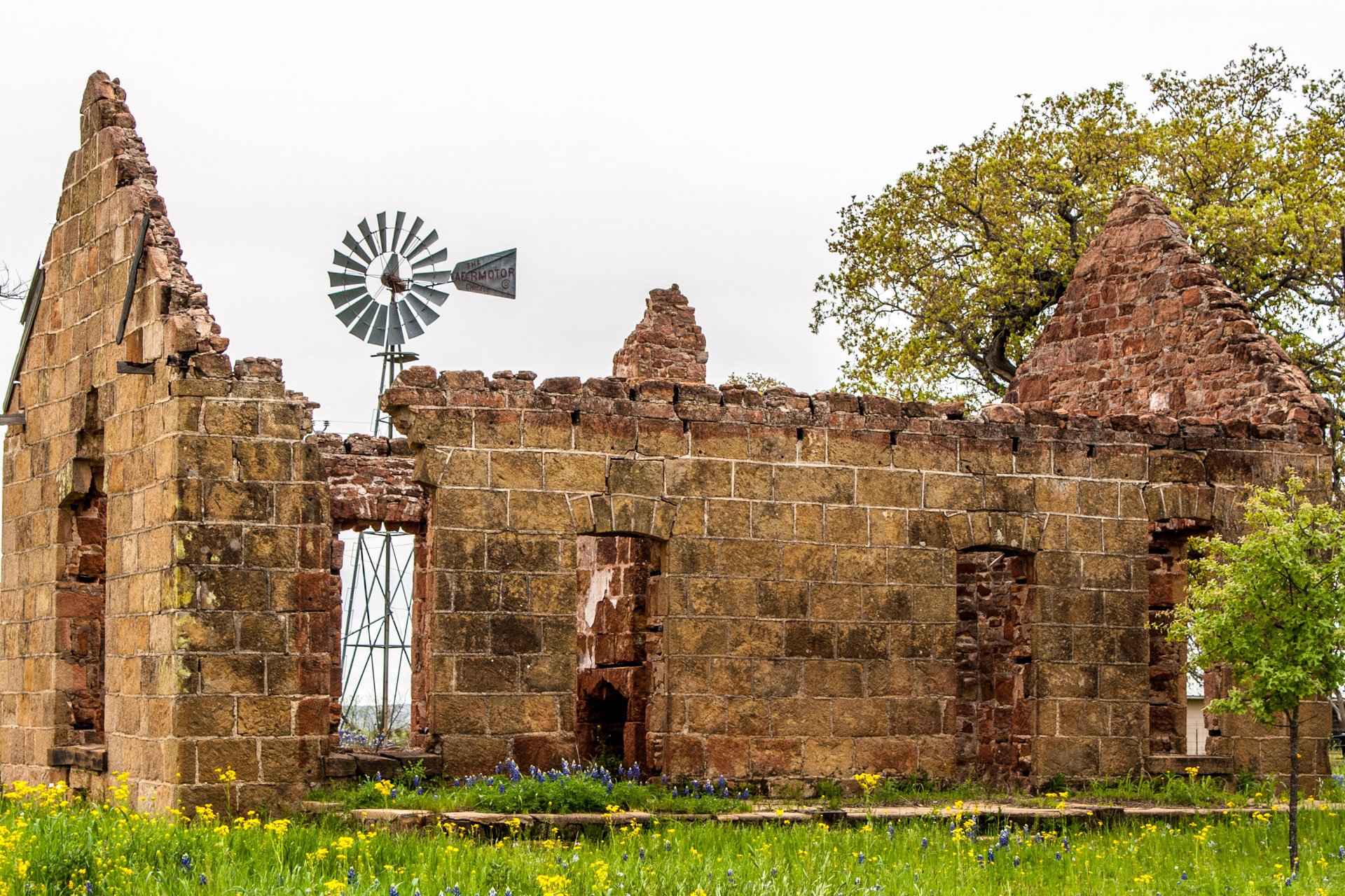Pontotoc, Texas - A Stone Ruin With Bluebonnets (angle close)