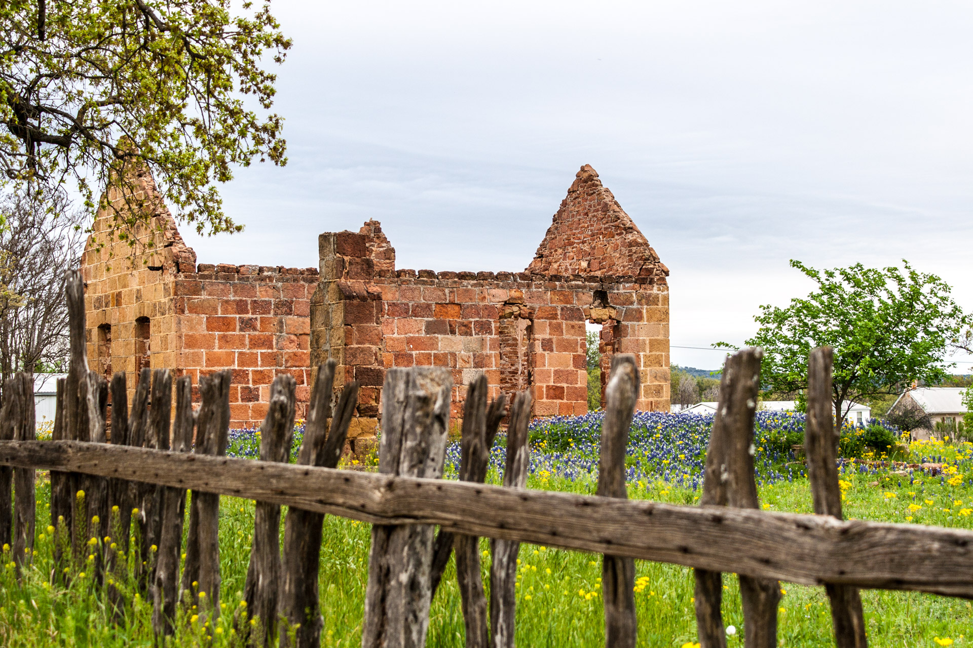 Pontotoc, Texas - A Stone Ruin With Bluebonnets (behind fence)