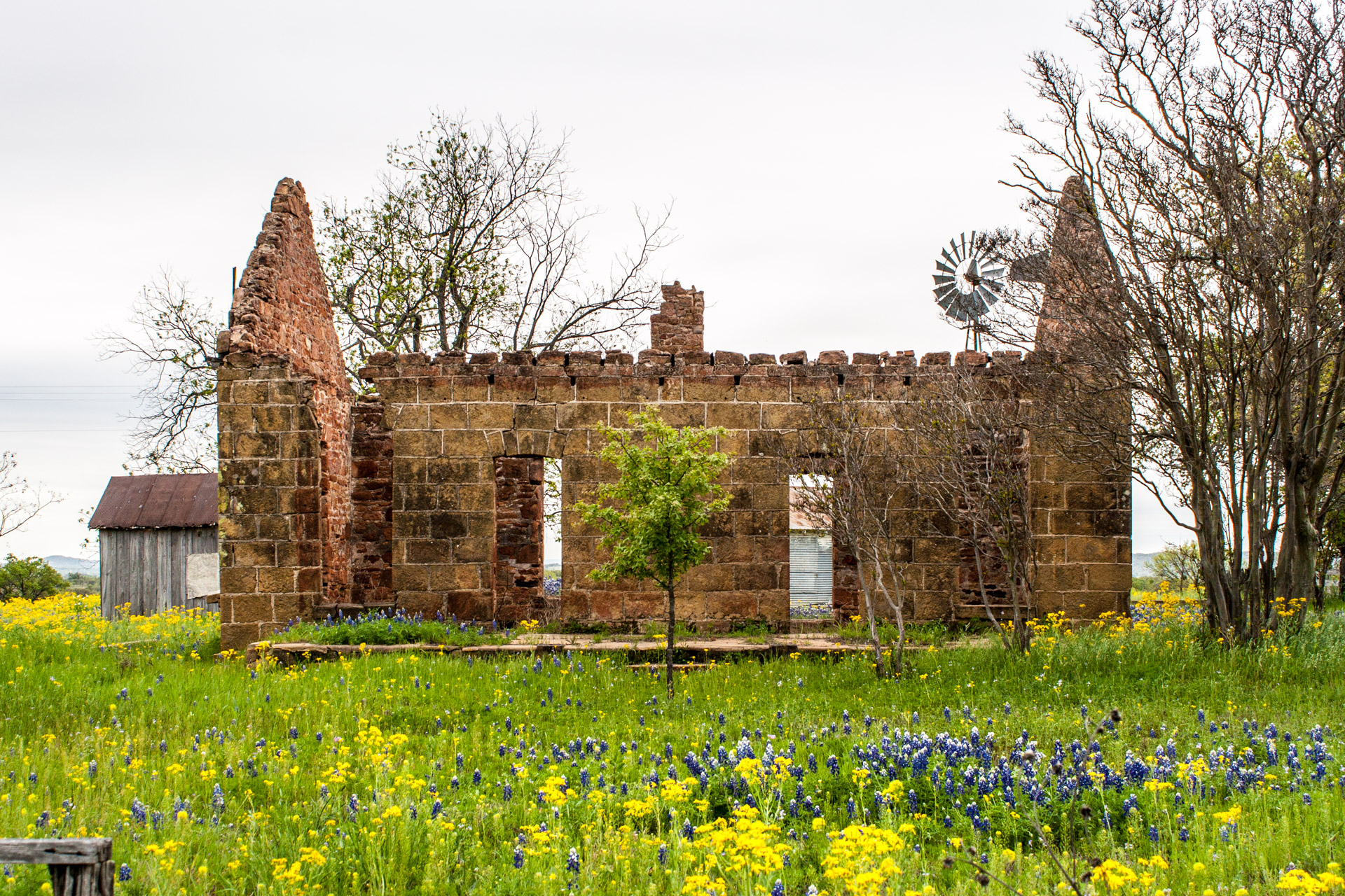 Pontotoc, Texas - A Stone Ruin With Bluebonnets (side mid)