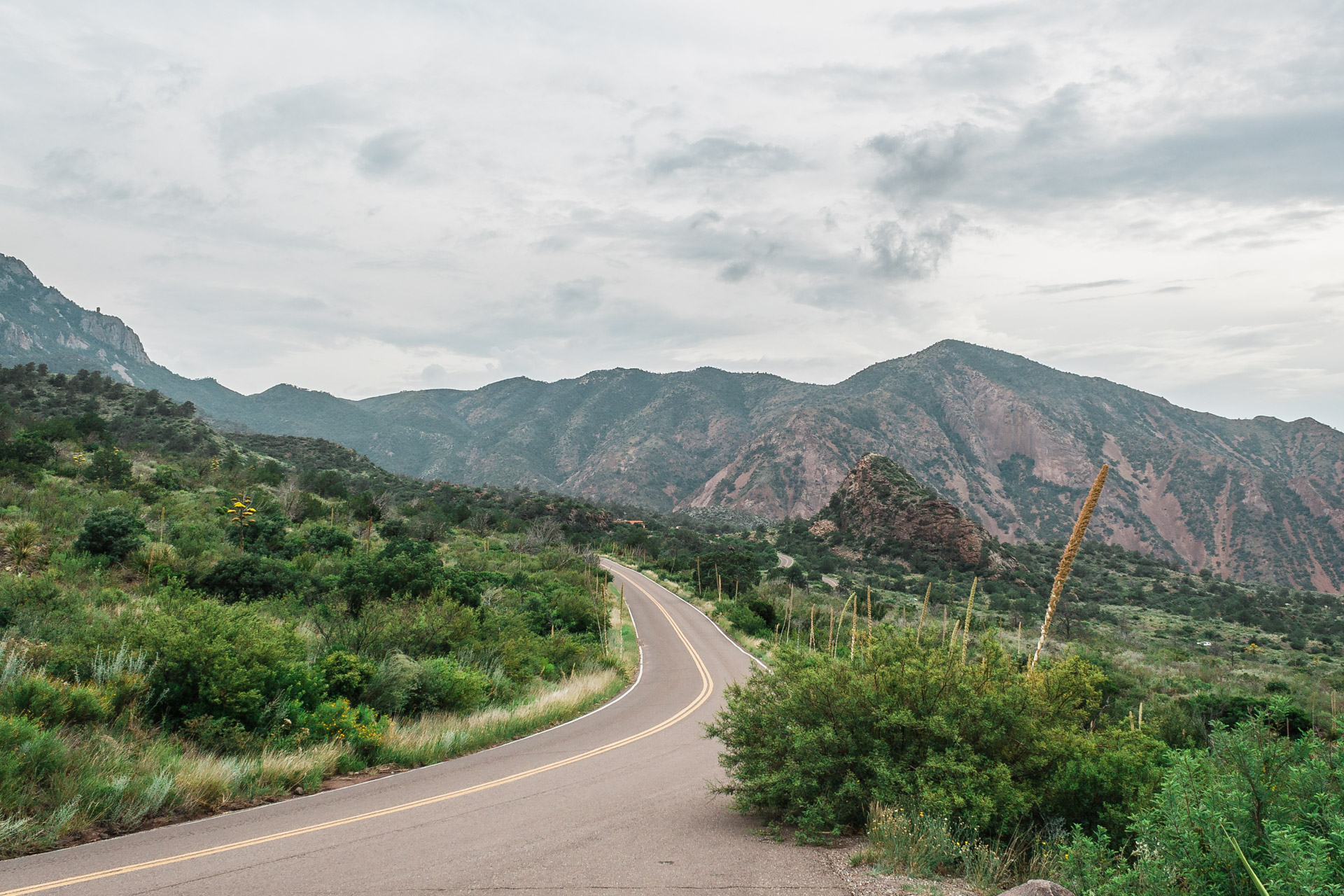 Behind The Road Trip Photos (big bend road)