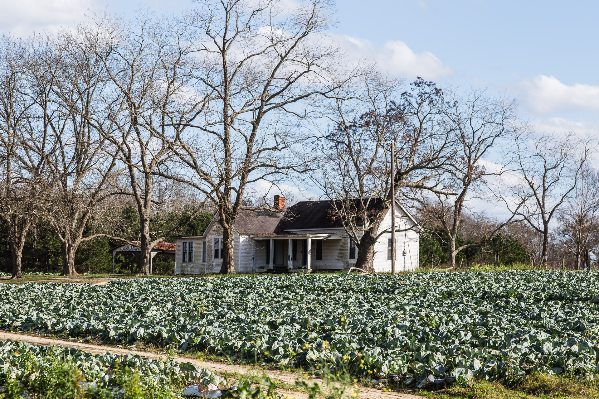 Tifton, Georgia - Cabbage Patch House