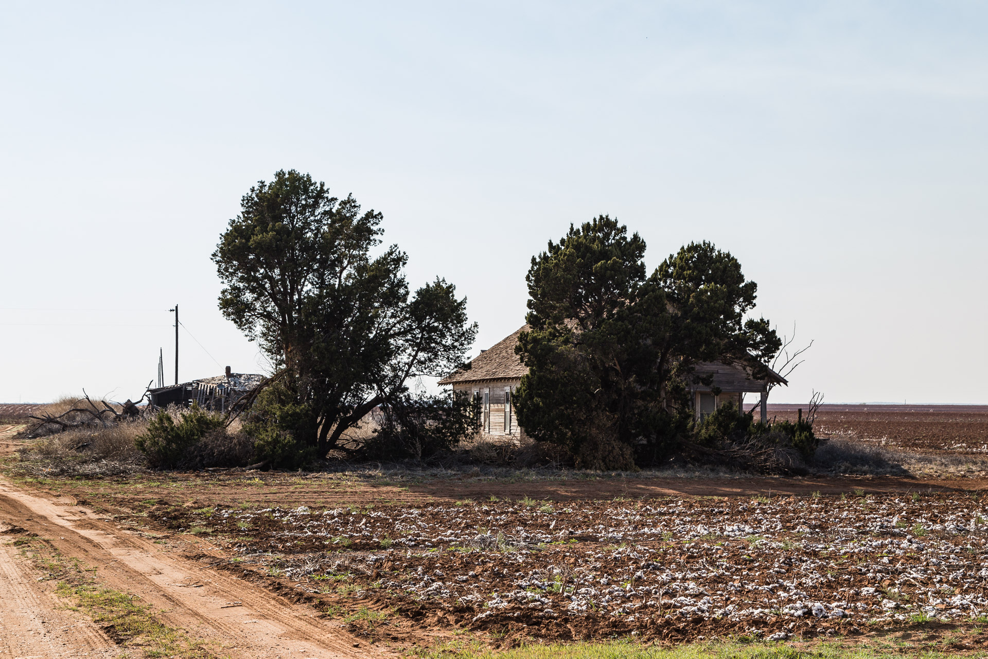 Newlin, Texas - Cotton Field House