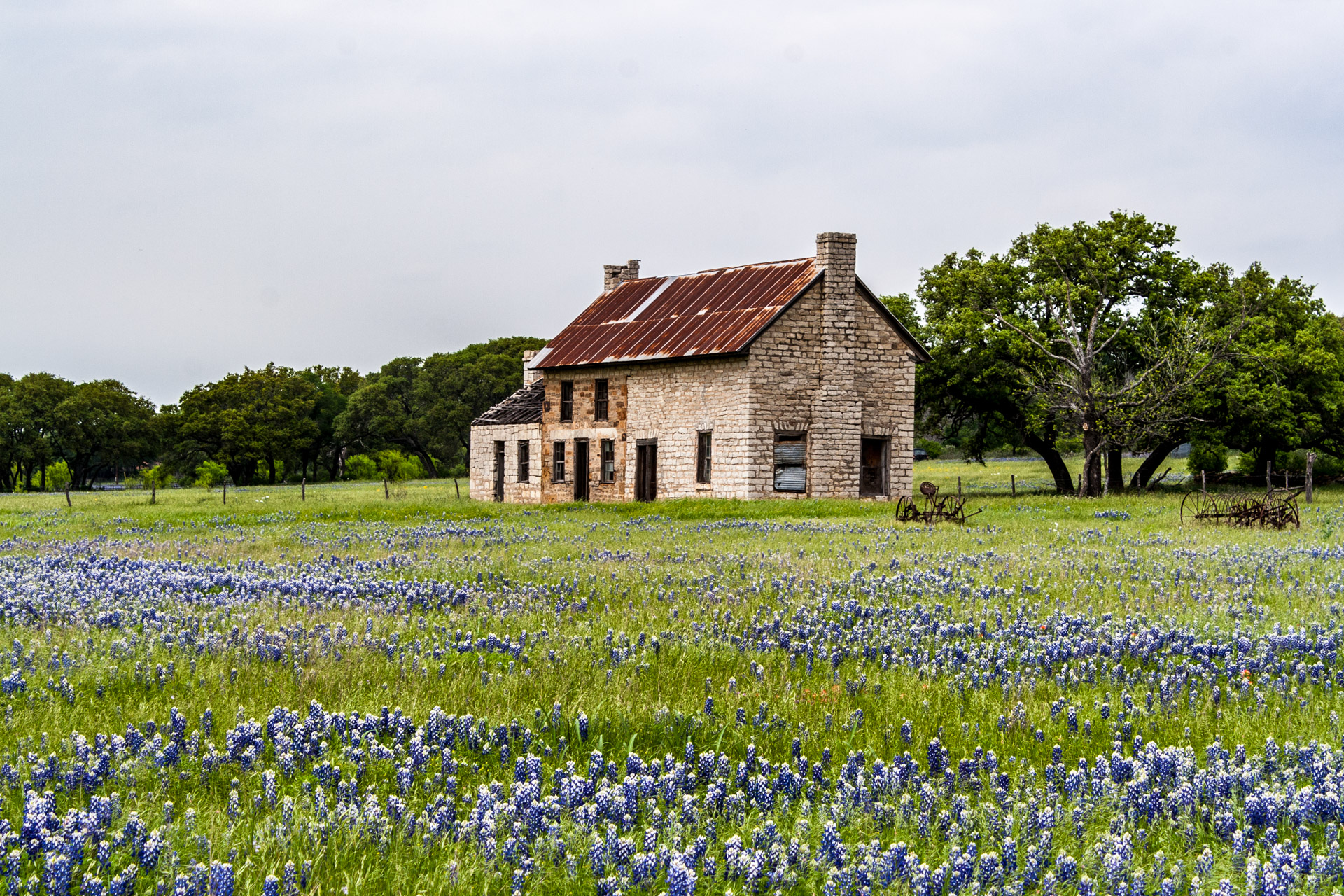 Farmhouse In A Field Of Bluebonnets + Friday Link Love