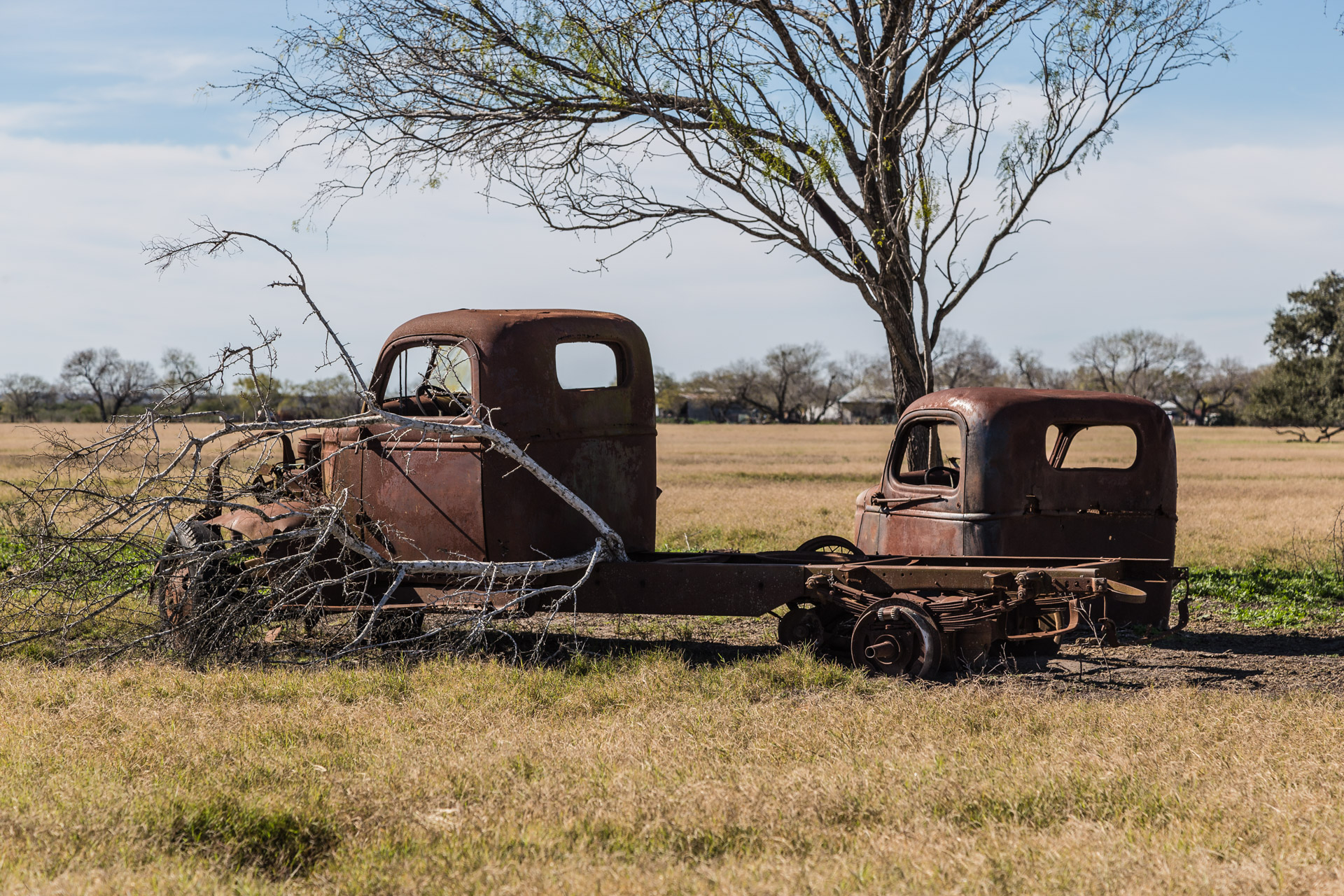 Rusty Vintage Trucks (side branch close)