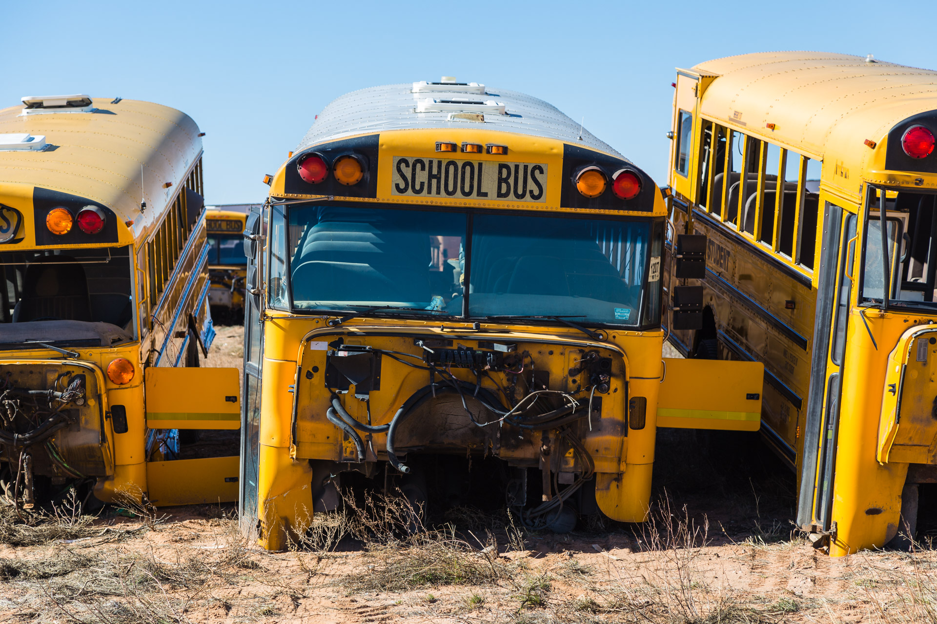 School Bus Graveyard (front bus close)