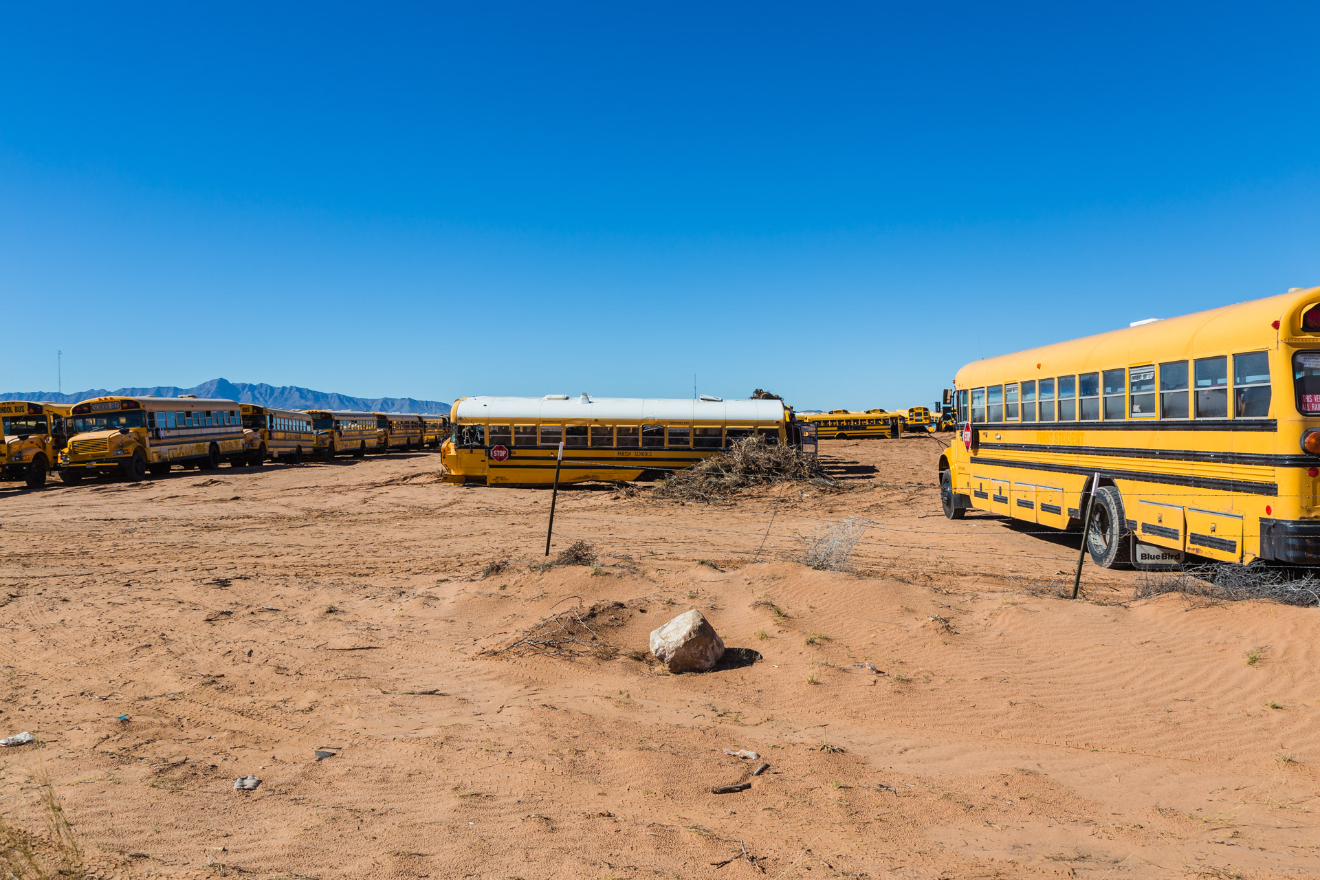 School Bus Graveyard (left side far)