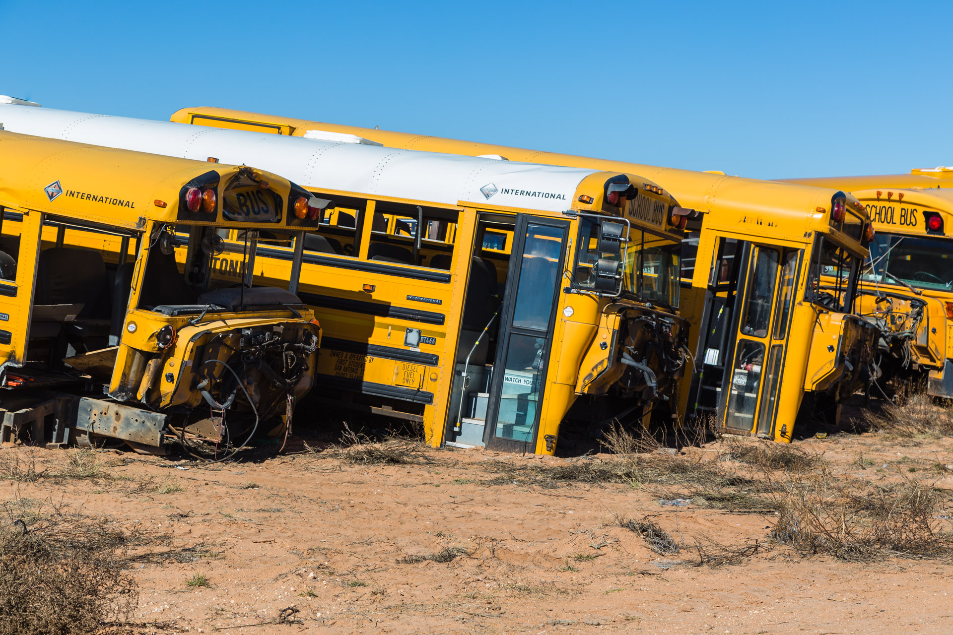 School Bus Graveyard (side bus close)