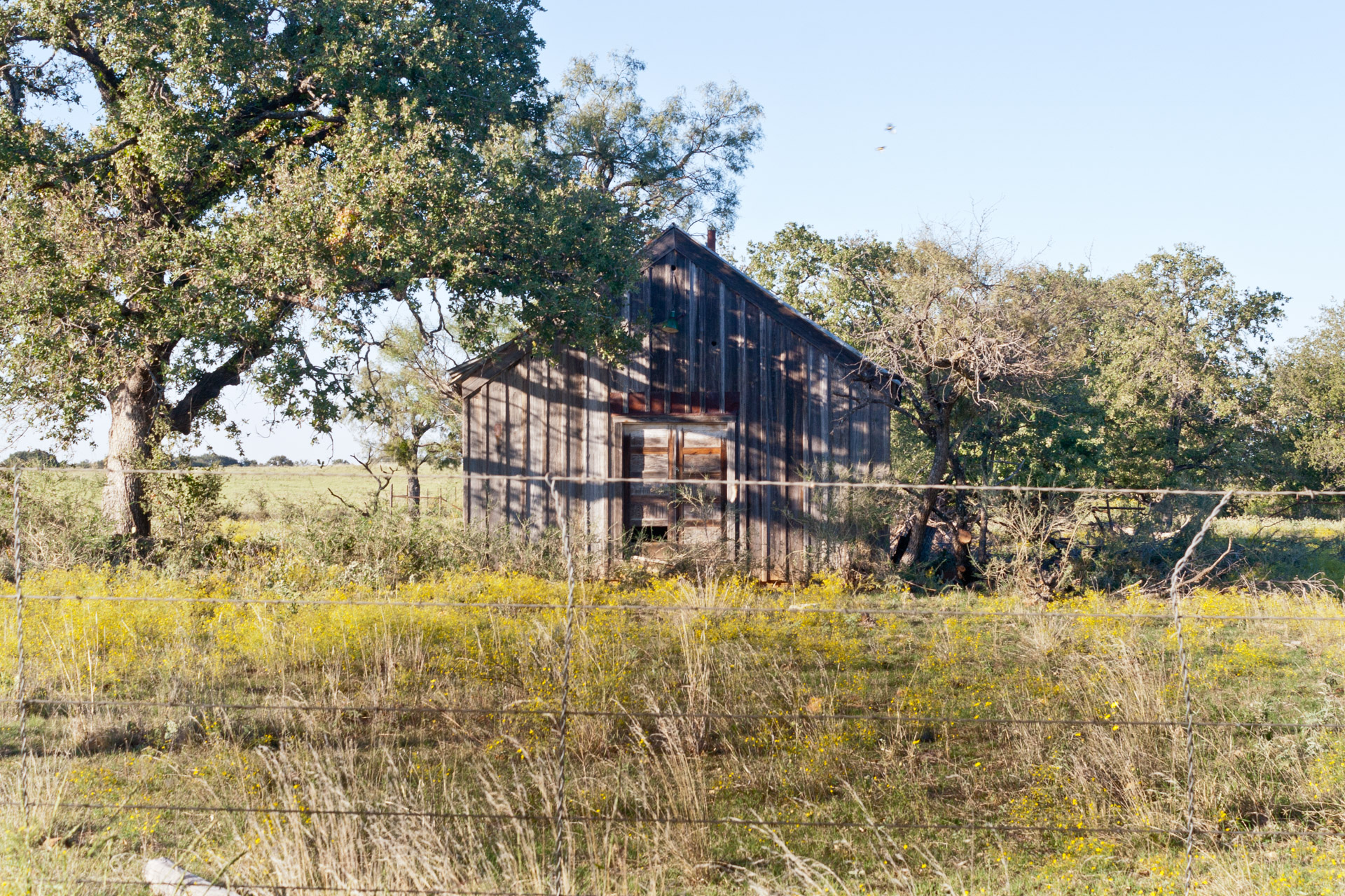 Mason County, Texas - The Broken Windows House (front far)
