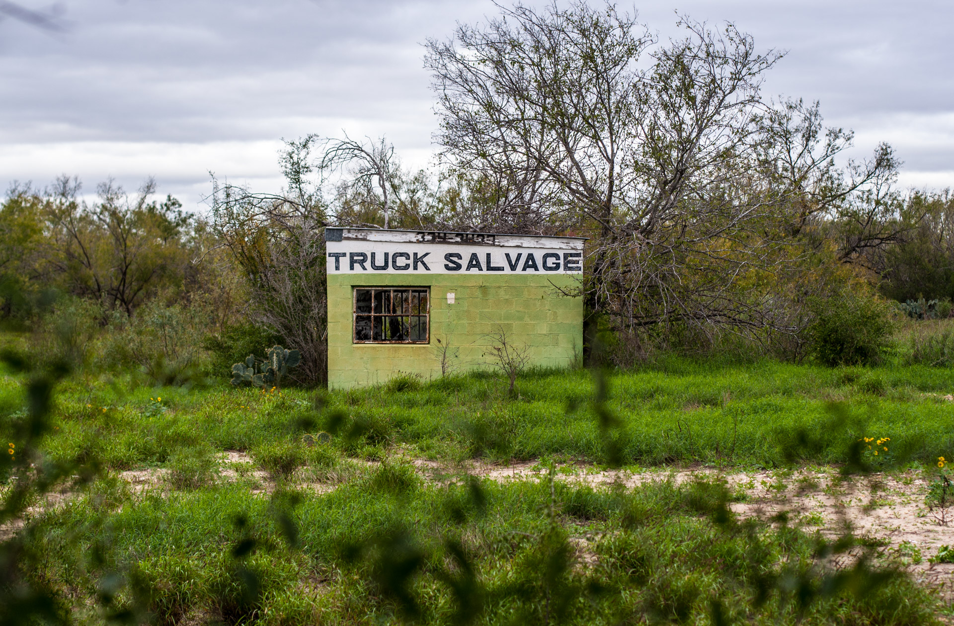 Pearsall, Texas - The Lime Green Salvage Yard (truck close)